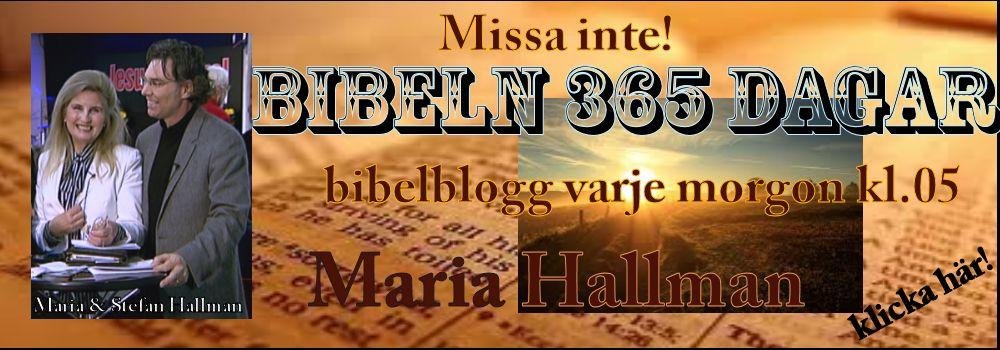 Bibelblogg-färdig